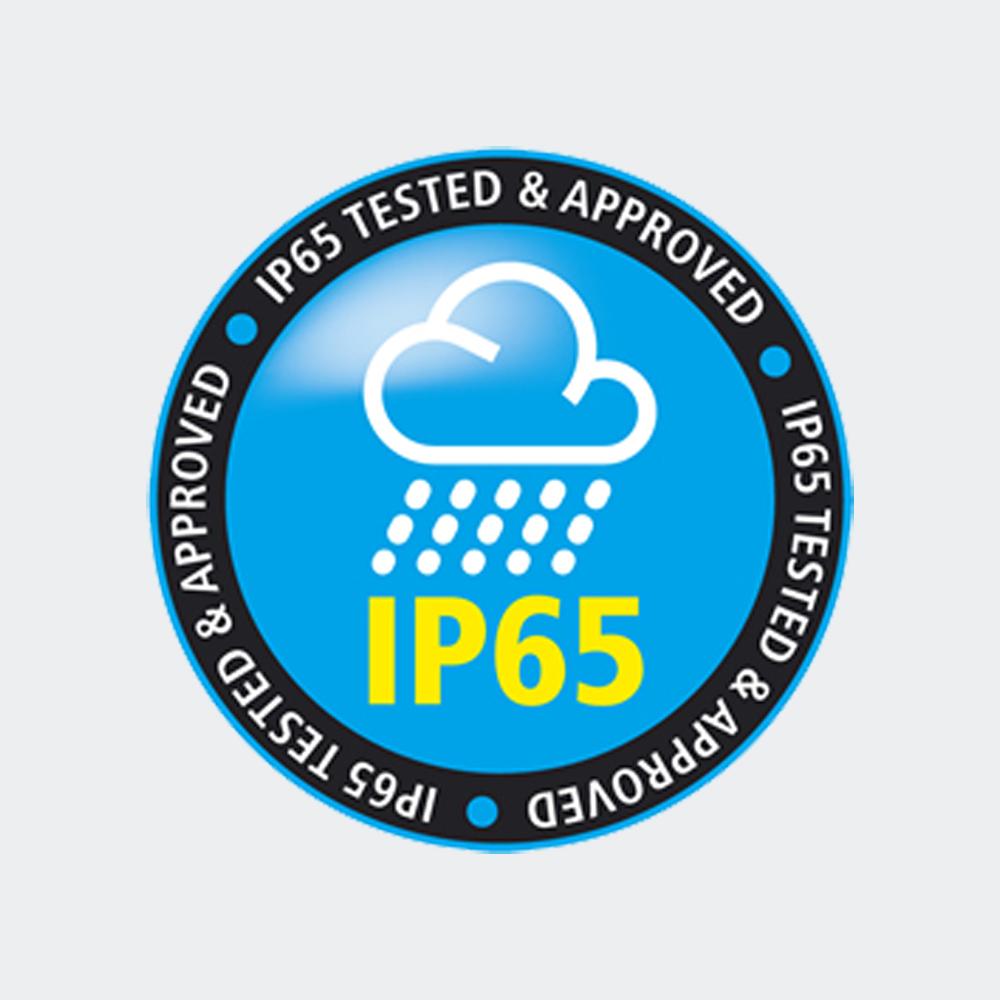 logo ip65.jpg